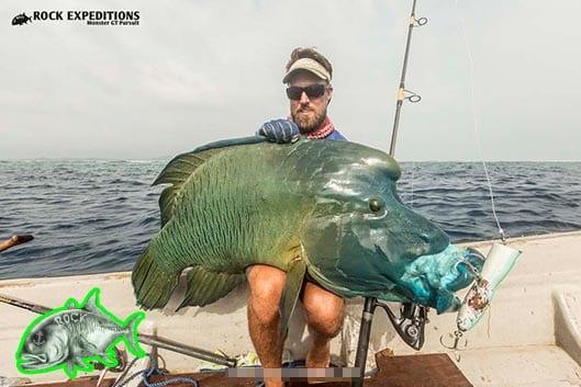 sudest tagula fishing charters papua new guinea sportfishing png tourism alotau